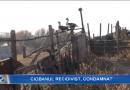 Ciobanul care a ucis un om la o stână din Vărzărești, condamnat la 15 ani de pușcărie